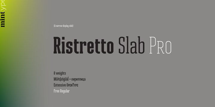 Ristretto Slab Pro Regular шрифт скачать бесплатно
