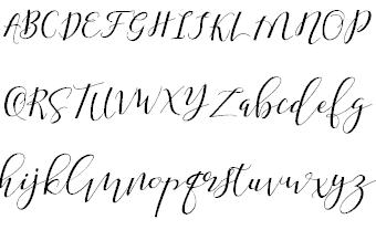Shany шрифт скачать бесплатно