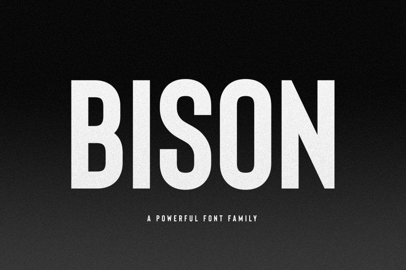 Bison Bold шрифт скачать бесплатно