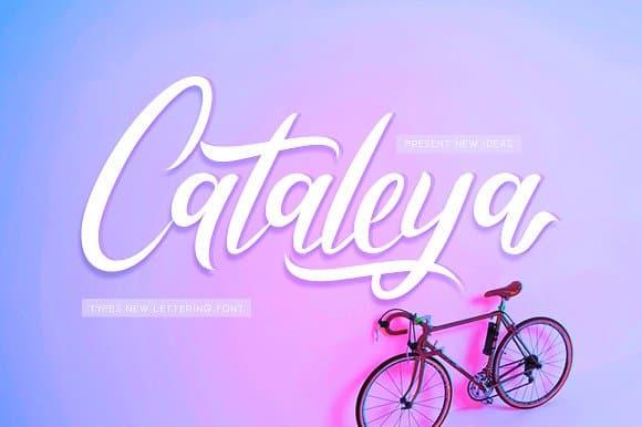 Cataleya шрифт скачать бесплатно
