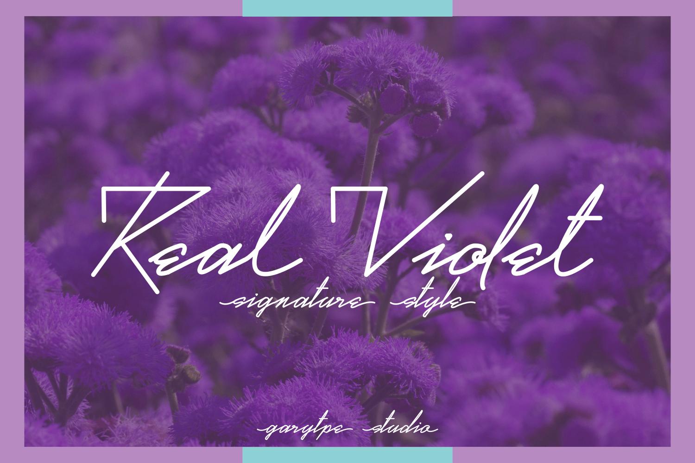 Real Violet шрифт скачать бесплатно