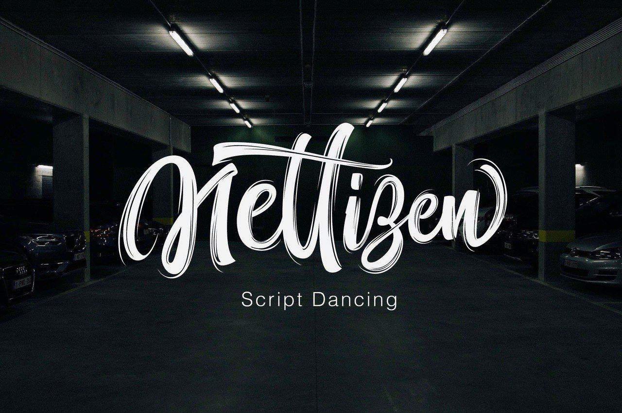 Nettizen шрифт скачать бесплатно