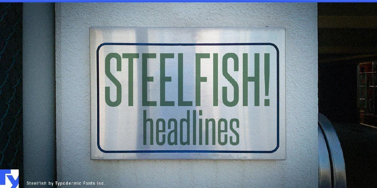 Steelfish шрифт скачать бесплатно